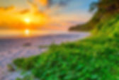 neil-island-radhanagar-beach-14933837791