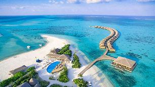Cacoon Maldives.jpg