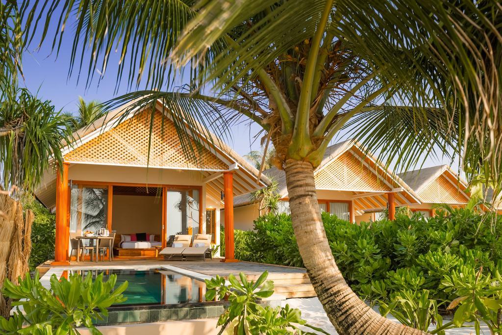 Kudafushi13.jpg