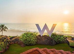 WGoa2.jpg