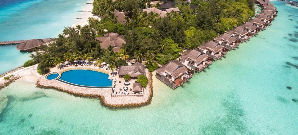 Taj Coral Reef 1.jpg