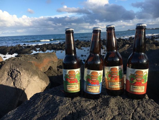 Bottles of cider sitting on a rock with ocean in the background