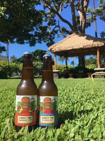 Two bottles of cider on neat green grass with a tiki hut in the background