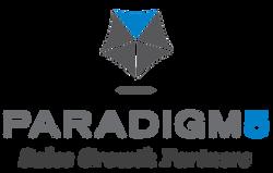 Paradigm 5
