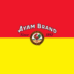 Ayam-Brand-logo-Double-Effect-House-Corp