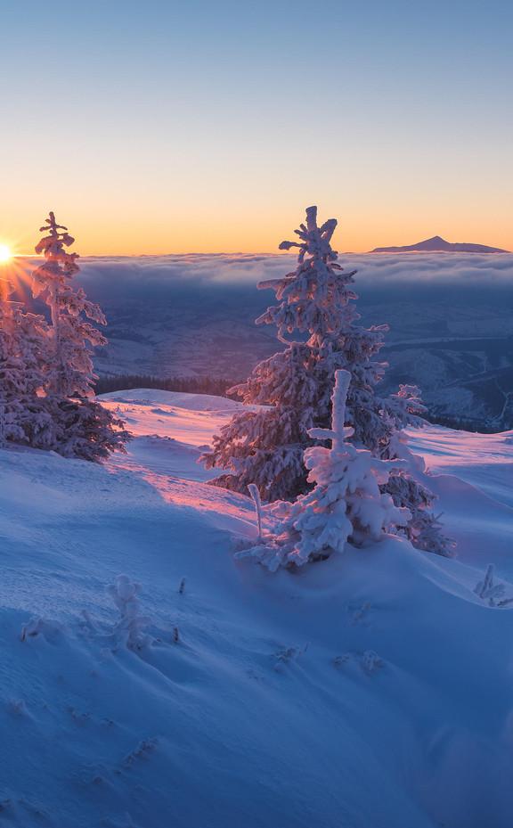 Зима 2021| 4 дня
