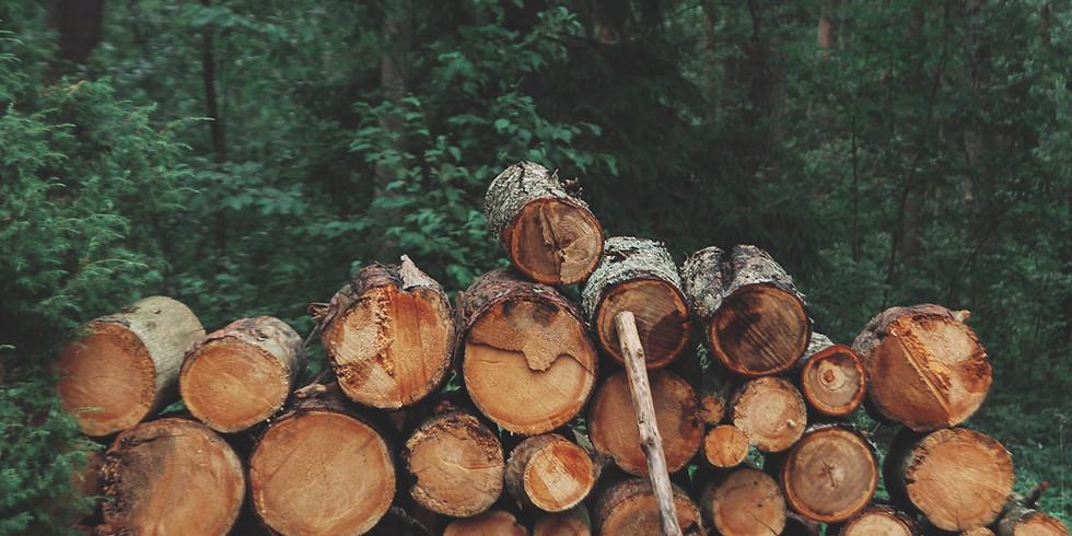 eLIMBS Timber & Log Intel - Bootcamp