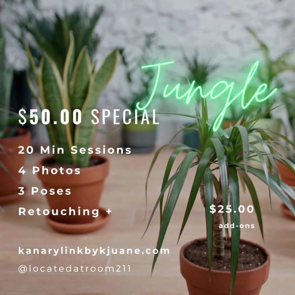 Only $50 special for Jungle book theme