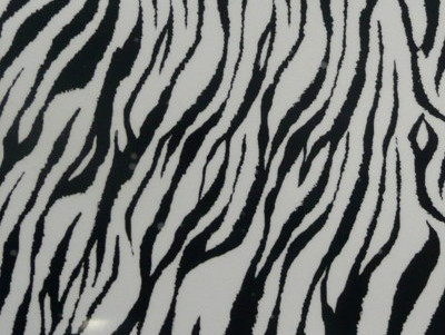 Zebrab
