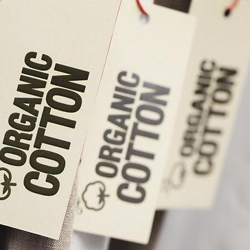 Organic-Cotton.jpeg