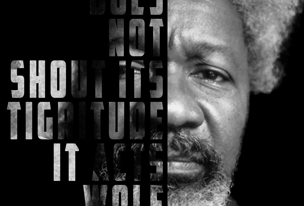 Wole Soyinka Poster