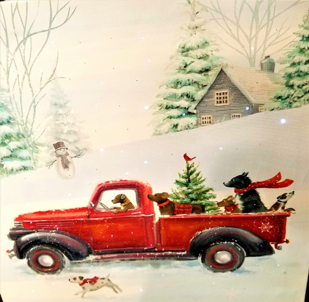 dogs in red truck xmas