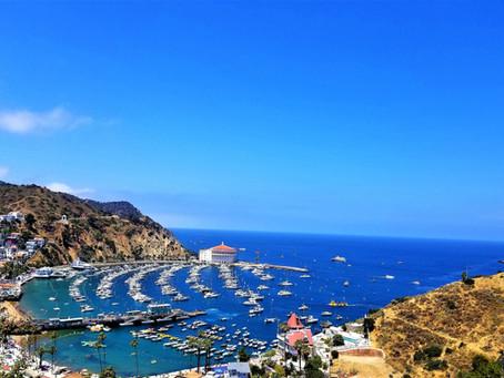 Veronica's #WritersDiary, #InspirationResearch (IR), Catalina Island Style!