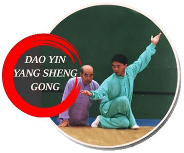 dao yin yang sheng gong.JPG