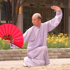 Grand Maître Zhang Guang De