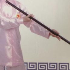 Qi Gong du bâton