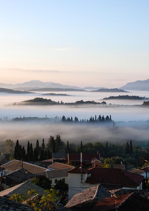 Morning spring mist