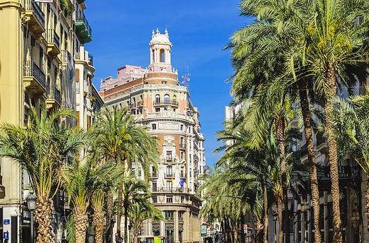 -arrer-de-les-barques-street-with-palm-t