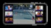 T1 crowdview WTT Copy 2.png