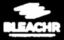 Bleachr LLC Logo