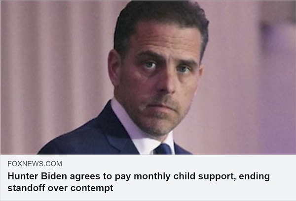 r_hunter biden agrees to pay child suppo