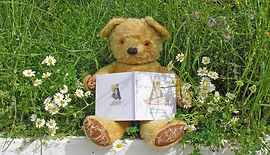 teddy and daisies walk with me 205.jpg