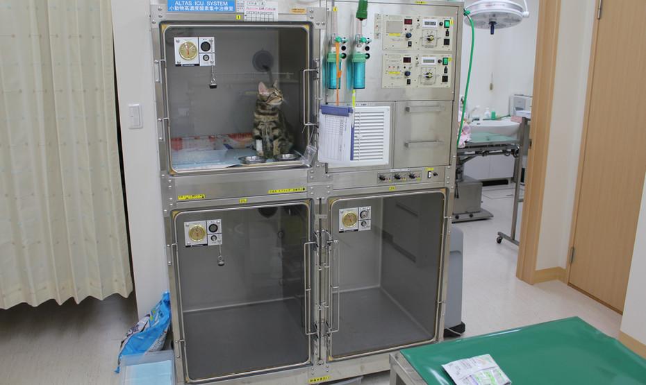 処置室 ICU