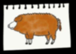 Cochon-Mangalica-Mas-Pujol.png
