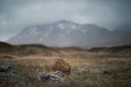 Öxnadalur - Þverárrétt