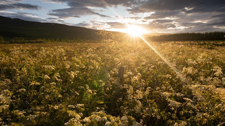 Haust á Akureyri