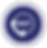 Integrated-Services-Circle-EAP.png