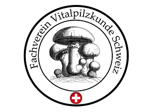 Logo_Viereck.png