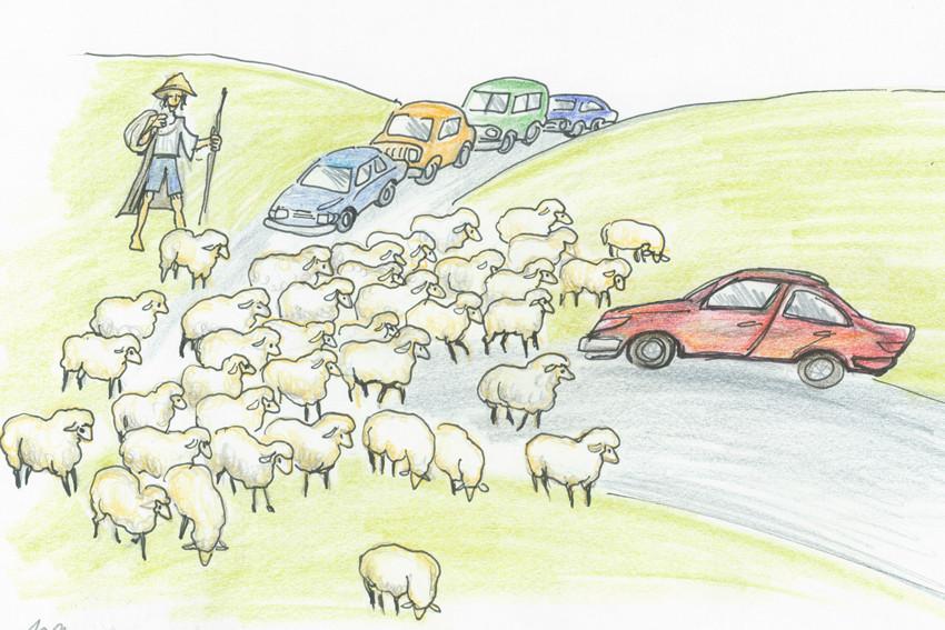 vtipné kresby do učebnice autoškoly