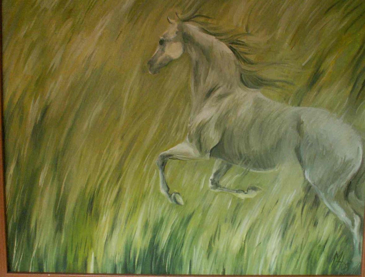 olej na plátně 70x55, 2008