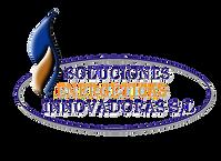 logo SENERGIN_edited.png