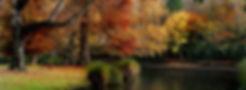 landscape-1808449_1920 (1).jpg
