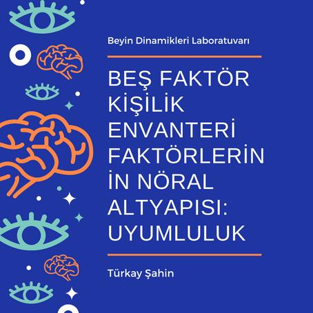 Beş Faktör Kişilik Envanteri Faktörlerinin Nöral Altyapısı: Uyumluluk