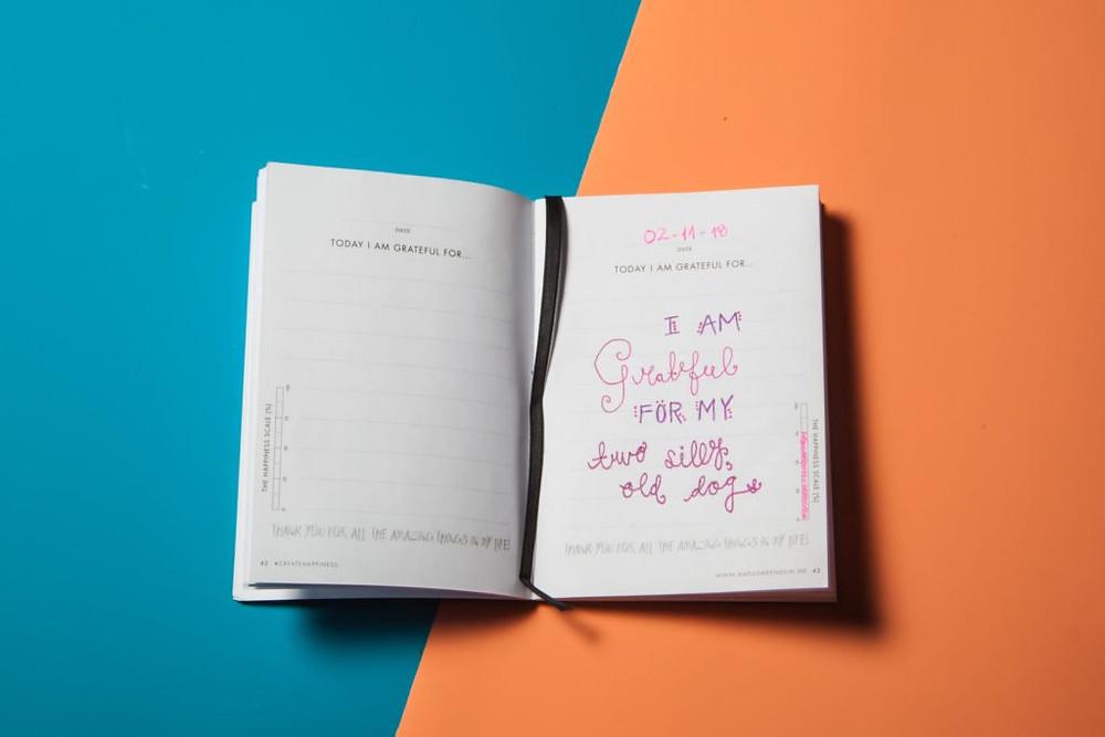 Maintain A Journal; A worthy Habit