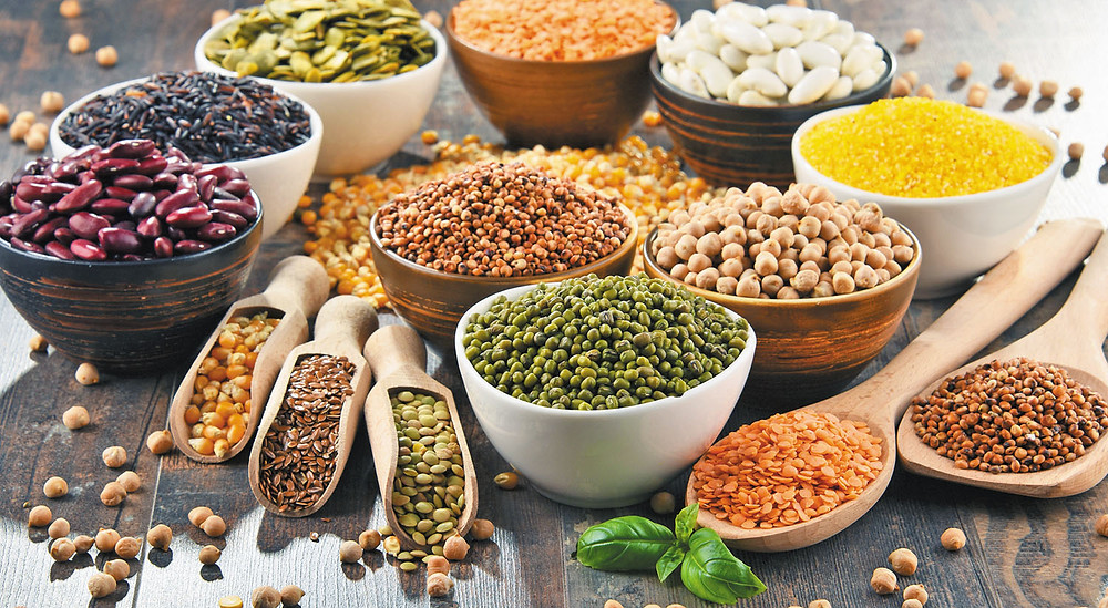 Legumes provides proteins for gaining muscles