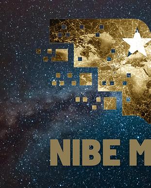 NIBE Media Logo.png