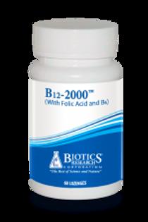 B12-2000 (60L)