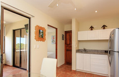 1-bed-1-bath-and-roof-top--v18586968-200