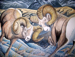 May the Best Ram Win