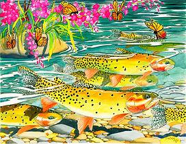 Cutthroat Creek lexi