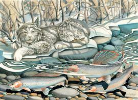 Lynx Creek