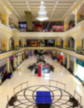 Mall Atrium-for form submission.jpg
