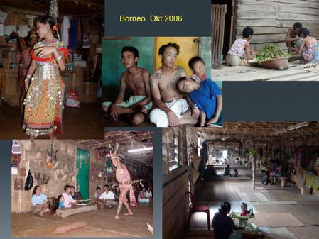 Patrick Desombere - Borneo