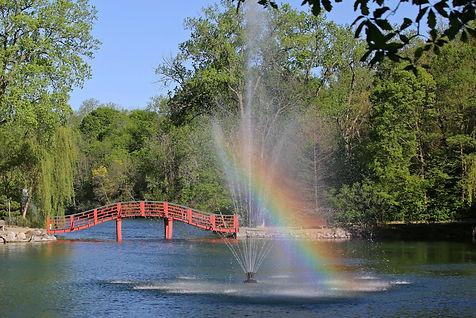 Japanese Bridge-Rainbow Marsha Mood IMG_
