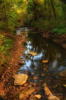 Creek bed along the trails at Rockport Park