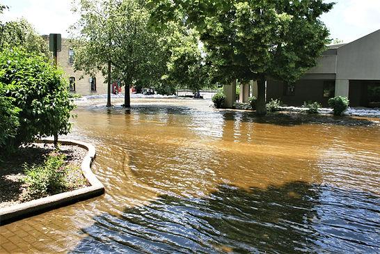 flood of 2008.jpg